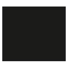 website-design-webace